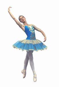 Il germoglio curriculum dell 39 insegnante di danza for Immagini di ballerine di danza moderna